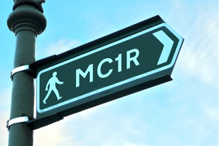 MC1R signpost