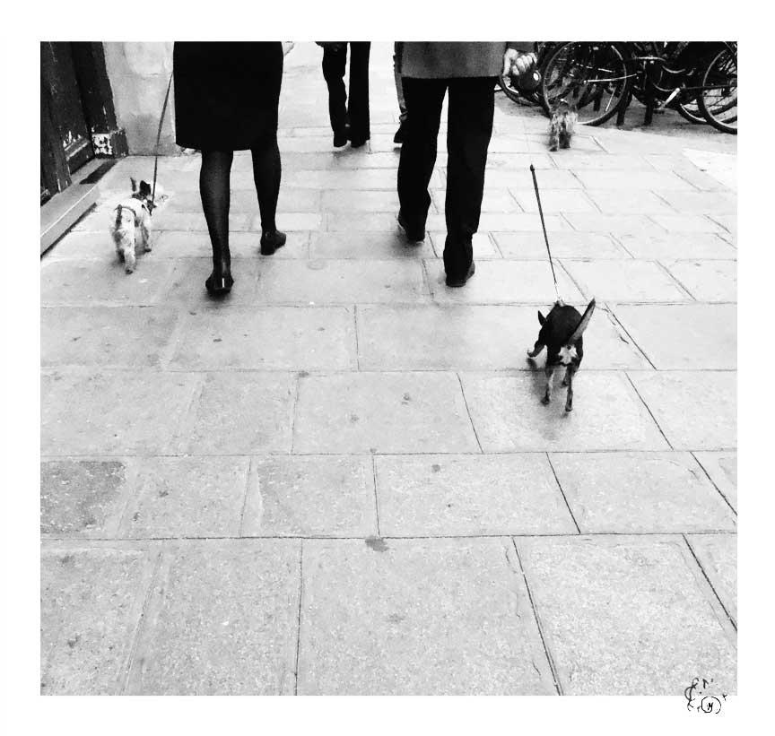 Paris en noir et blanc 1