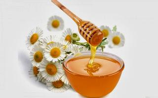 Beberapa manfaat madu bagi kesehatan