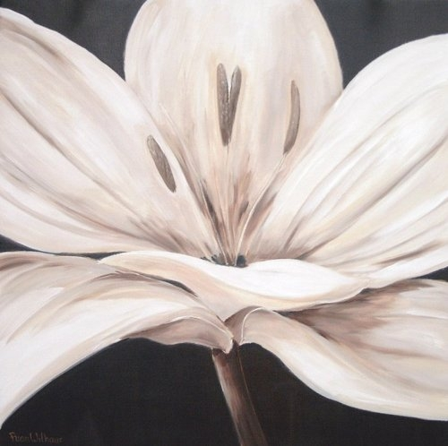 flor en color blanco en dibujo dibujos de flores en blanco y negro ...