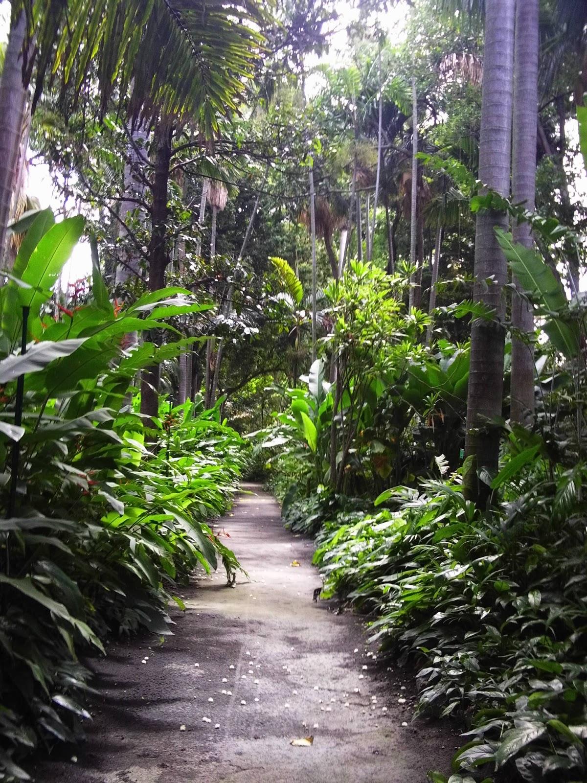 Over the rainbow foster botanical garden kuan yin temple for Foster botanical garden honolulu