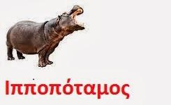 https://dl.dropboxusercontent.com/u/72794133/%CE%96%CE%A9%CE%91/hippo.wav