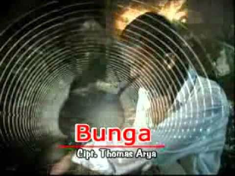Lirik Dan Kunci Gitar Lagu Thomas Arya - Bunga