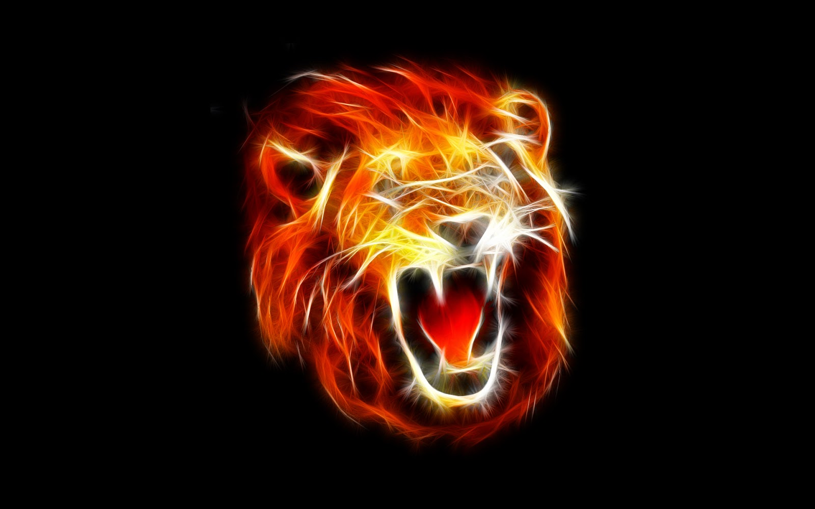 Lions hd wallpapers
