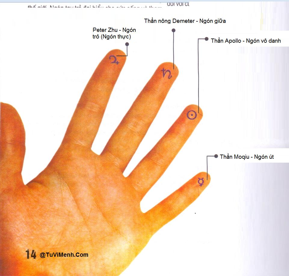 [Tướng tay] - Khoảng cách giữa các ngón tay
