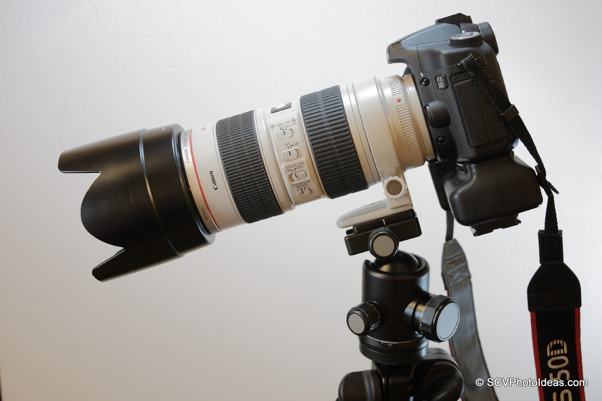 Canon EOS 50D+BG-E2N+EF 70-200 L IS USM on lens foot horizontal