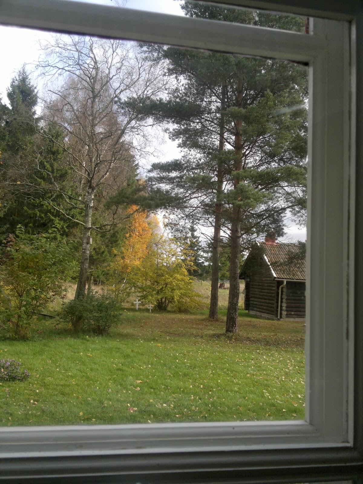 Åsselsta Grön Rehab Västmanland: oktober 2012