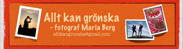 Allt kan grnska - photo