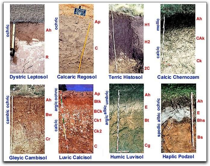 Agronovida las tierras por su aptitud - Tipos de suelos para casas ...