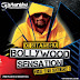 BOLLYWOOD SENSATION ( THE NEW YEAR EDITION 2014 ) DJ SITANSHU