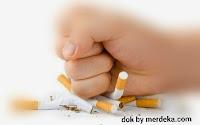Makanan dan Minunan ini Dapat Memberi sugesti, Seseorang Berhenti Merokok