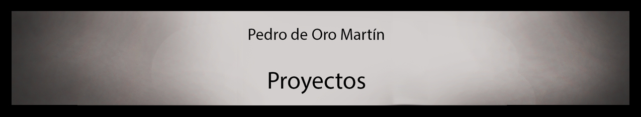 Pedro de Oro Martín. Proyectos