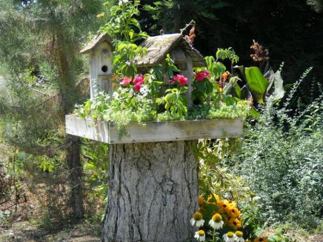 Enchanted Forest Garden Series Best Ideals To Add