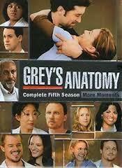 Anatomía de Grey Temporada 5 Online