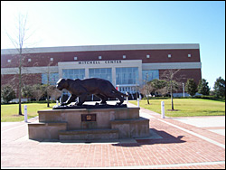 The University of South Alabama's Jaguar