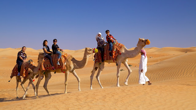 cưỡi lạc đà, sa mạc, dubai, du lịch, trải nghiệm, vé máy bay đi dubai