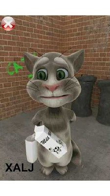 Play with Talking Tom Cat App on Nokia Phones