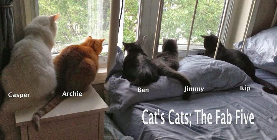 Cat's Cats