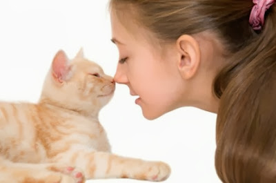 Charming Quotes About Cats
