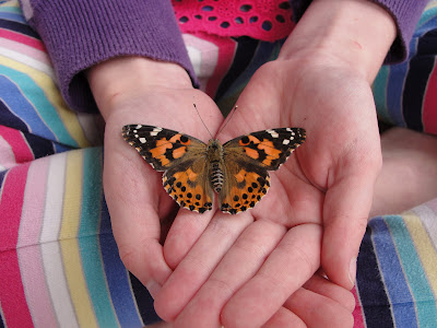 painted lady butterfly in child's hand