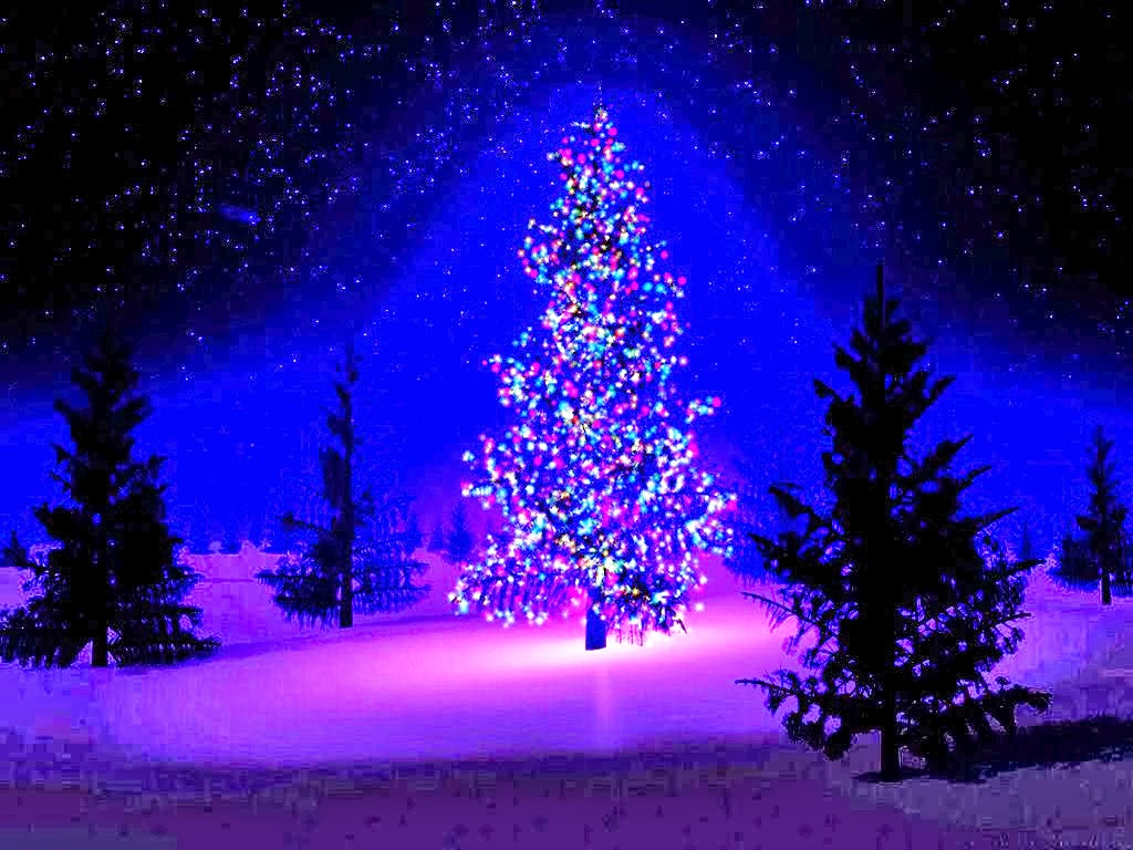Lovely Festival Christmas Tree Wallpapers ~ Free HD ...