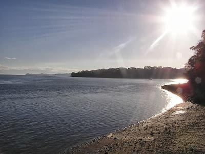 Playa Naranjo, Puntarenas