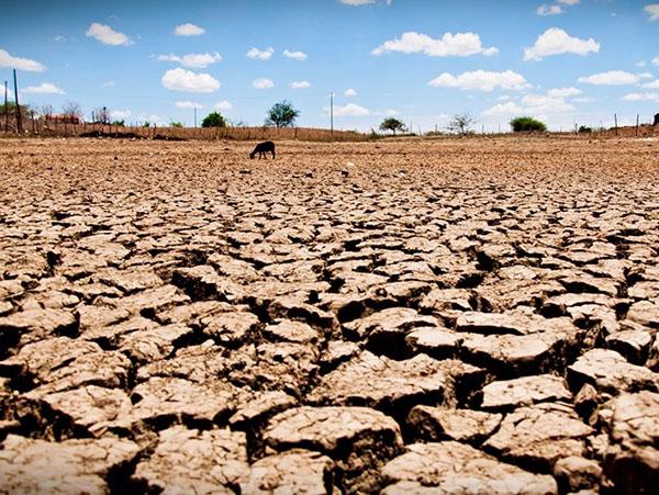 Centro de Referência em Clima e Desenvolvimento Sustentável
