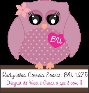 MASCOTE BABY CORUJA ALEGRIA!