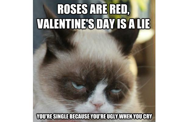 Grumpy Valentine Memes
