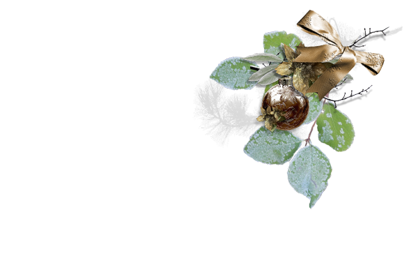 Random Thoughts At Linda's Place