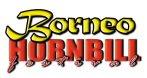 Website:Borneo Hornbill Festival