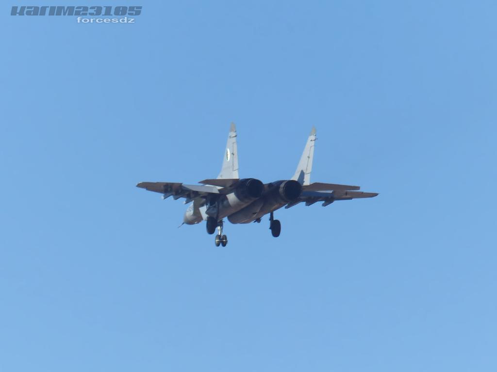 صور طائرات القوات الجوية الجزائرية  [ MIG-29S/UB / Fulcrum ] D