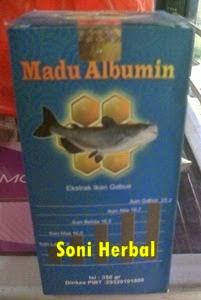 Madu albumin al mabruroh termurah di soni herbal