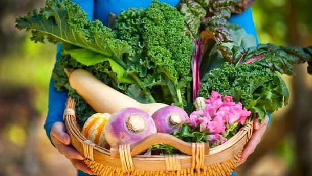 7 Vegetais do outono e seus benefícios de saúde