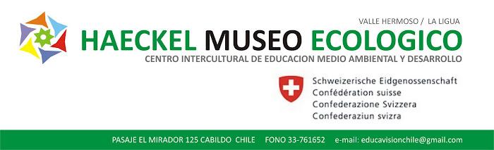 Haeckel Museo Ecológico