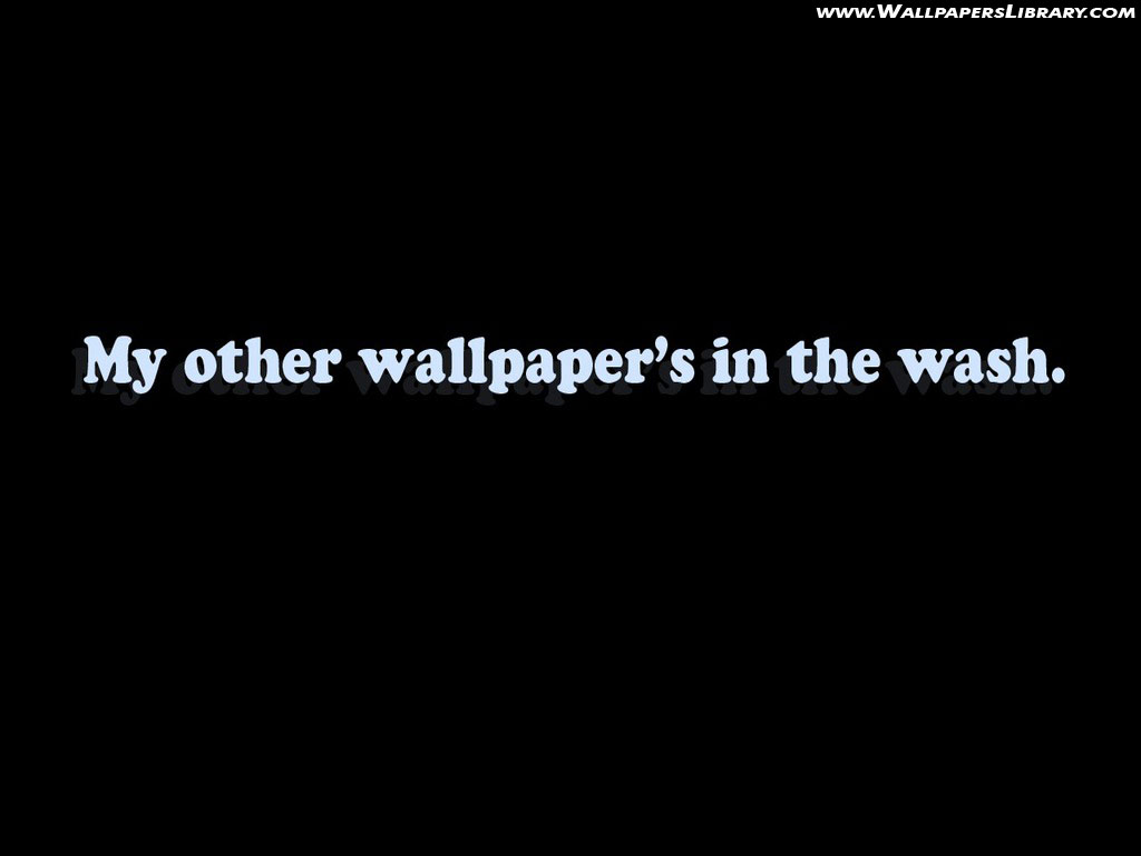 Free Wallpaper Funny Wallpaper Daily updated collection