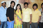 Cut Chesthe Movie Press Meet Photos-thumbnail-3
