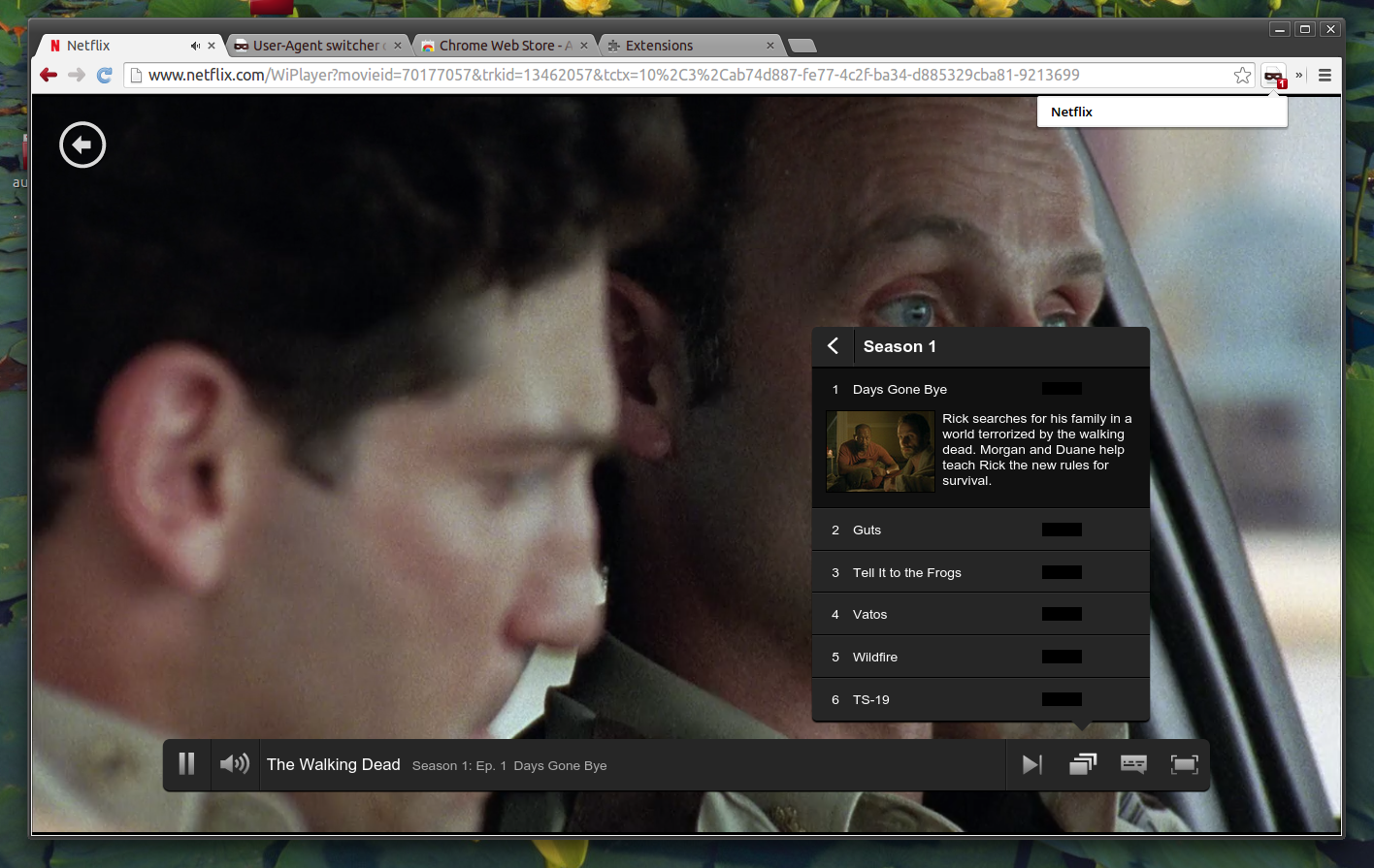 Netflix HTML5 Ubuntu