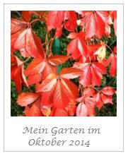 Maries Garten im Oktober
