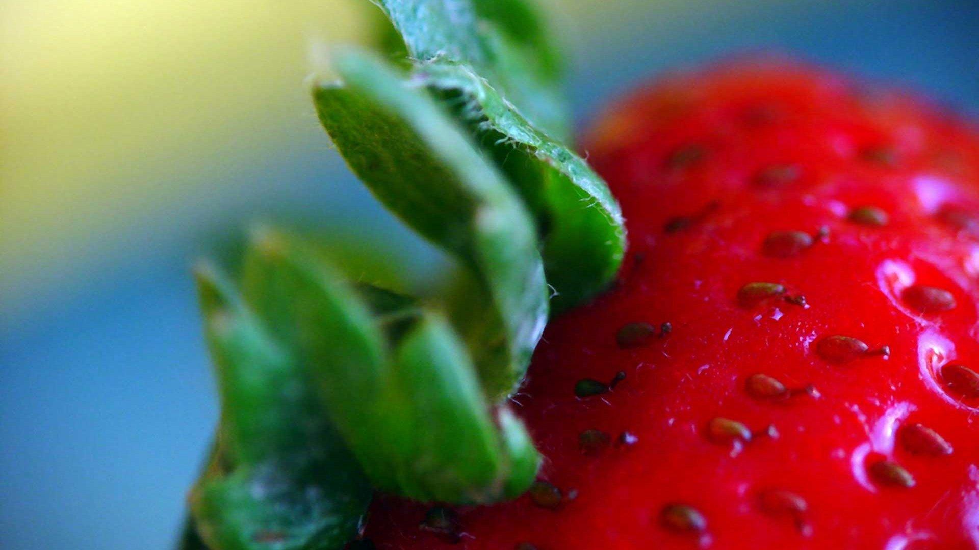 Strawberry Macro HD Wallpaper