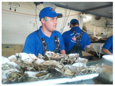 Quality Seafood Oysters