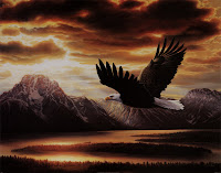 Voar como as águias