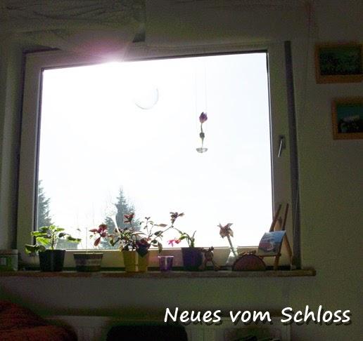 friday-flowerday, upcycling- neuesvomschloss.blogspot.de