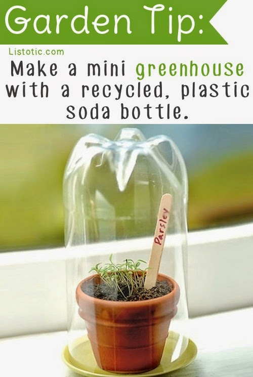 20 Insanely Clever Gardening Tips And Ideas
