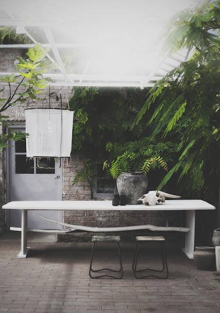 orangeri følelsen ved vilde planter og duftende urter