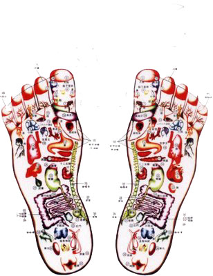 herbal1medicine.blogspot.com/acupuncture points on the feet