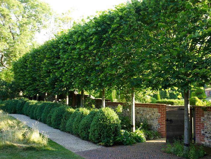 Английский сад ландшафтный дизайн Дизайн красивых
