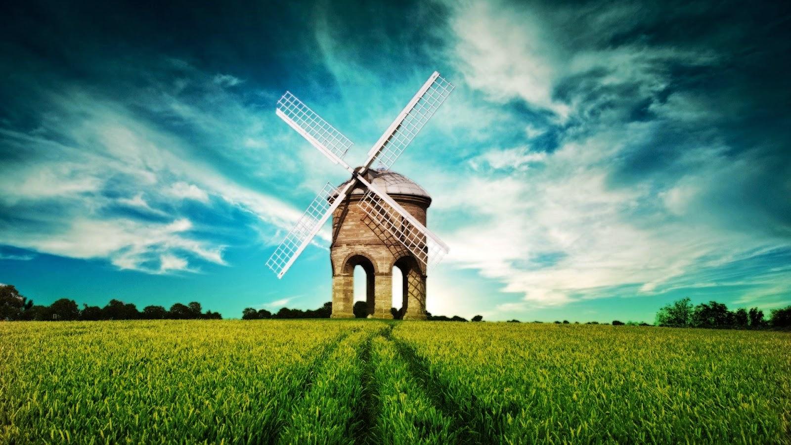 """<img src=""""http://1.bp.blogspot.com/-c4TFNU_5mgQ/U8GXJjhXjeI/AAAAAAAALlY/DGuMawx7M1g/s1600/grass-hd-wallpaper.jpeg"""" alt=""""Grass HD Wallpaper"""" />"""