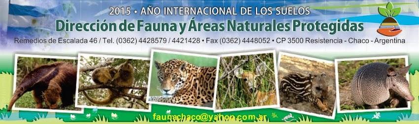 DIRECCION DE FAUNA Y AREAS NATURALES PROTEGIDAS - CHACO