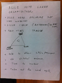 Notes regarding Introducing agile into large organisations